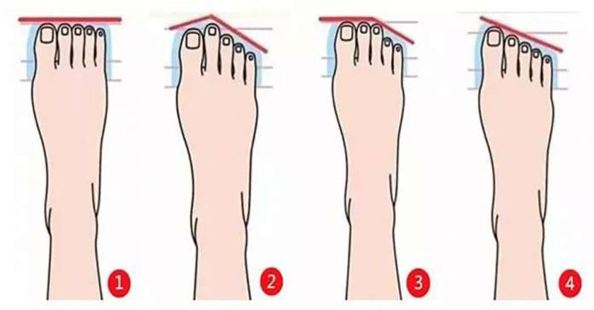 The shape of the foot can tell us about the character: 4 personality type